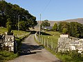 The entrance drive to Caegoronwy - geograph.org.uk - 2108835.jpg