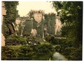 The moat, Raglan Castle, Wales-LCCN2002708068.tif