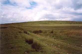 Mynydd Bach Trecastell - On the slopes of Mynydd Bach Trecastell