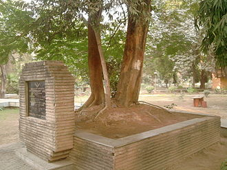 Chandra Shekhar Azad - The tree in Alfred Park, Allahabad, where Azad died.
