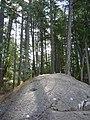 Thetis Lake Regional Park (1359259355).jpg