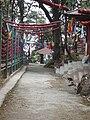 Tiger Hill Darjeeling West Bengal India (4).JPG