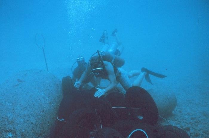 Tire reef
