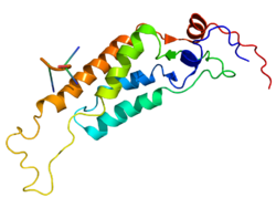 Tobacco Mosaic Virus structure.png