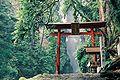 Todoroki Ninetynine Waterfalls Hontaki.JPG