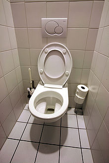220px-Toilettes_mg_3872b.jpg