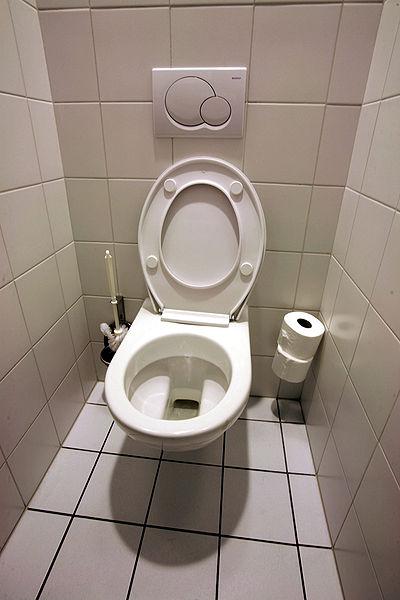 Fichier:Toilettes mg 3872b.jpg