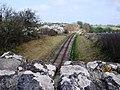Torbay and Dartmouth Steam railway, looking towards Galmpton - geograph.org.uk - 368383.jpg