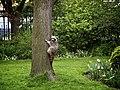 Toronto Raccoon May 2012.jpg