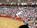Toros en Almeria.JPG