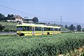 Trams de Neuchâtel (Suisse) (5511104059).jpg