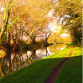 Trent and Mersey canal path, Weston.png