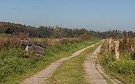 Tussen Denekamp en Oldenzaal, weg voor landbouwvoertuigen foto11 2016-09-25 09.56.jpg