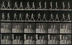 Two adolescents walking. Photogravure after Eadweard Muybrid Wellcome V0048620.jpg