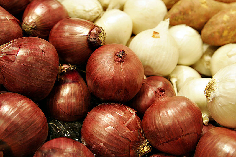 Onions for Winter Root Cellar