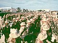 U. S. Troops arrive in Mogadishu.jpg