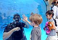 US Navy 110528-N-GO025-189 Navy Diver 1st Class Michael Patterson high-fives a boy through the aquarium glass during a Navy diver demonstration at.jpg