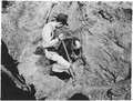 Unearthing dinosaur bones. Cornhusker Ordnance Plant, Nebraska. - NARA - 292132.tif
