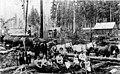Unidentified logging camp near Olympia, Washington, 1897 (INDOCC 514).jpg
