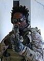 United States Navy SEALs 004.jpg