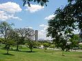 Universidade de São Paulo - campus - Torre do Relógio (USP campus Clocktower) - panoramio.jpg