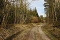 Unterhölzer Wald-3581.jpg