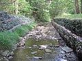 Upper Pine Bottom State Park Run 2.jpg