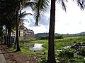 Urban sprawl seen from beyond the fields, Goa, India.jpg