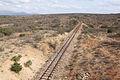 Usambara Railway tracks.jpg