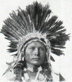 Ute American Indian Mongoloid.png