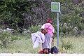 Vägen till Etosha-5525 - Flickr - Ragnhild & Neil Crawford.jpg
