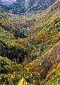 Val Aran vall riu Joeu 8480-01.jpg