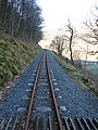 Vale of Rheidol Railway - geograph.org.uk - 725149.jpg