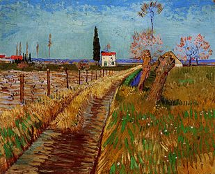 Path Through a Field with Willows