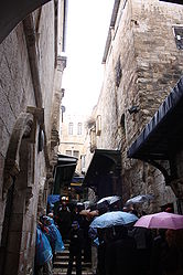 Via Dolorosa Station of the Cross VI 2010 4.jpg