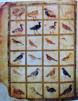 Vienna Dioscurides - A gallery of birds from folio 483v of the Vienna Dioscorides