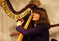 Vienna 2013-11-21 Porgy+Bess - RAU sound recording, Monika Stadler.jpg
