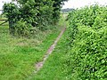 View along footpath at the end of Thornton Lane - geograph.org.uk - 487013.jpg