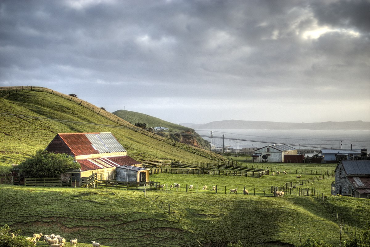 Chatham islands wikidata for The chatham