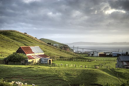 Chatham Islands farm View from Chatham Islands.jpg