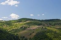 View from Villa Vignamaggio (5771965060).jpg