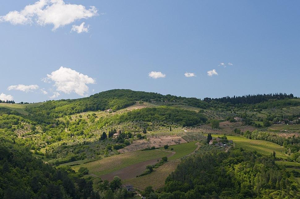 View from Villa Vignamaggio (5771965060)