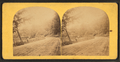 View on the Wissahickon, from Robert N. Dennis collection of stereoscopic views 3.png