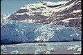 Views of Glacier Bay National Park and Preserve, Alaska (7c457023-e1bc-4c2c-9557-cdf2f7225e42).jpg