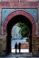 Vista de la Puerta del Vino.jpg