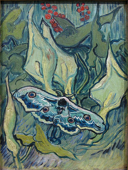"""""""Great Peacock Moth"""" by Vincent van Gogh"""