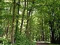 Waldguckheim.jpg