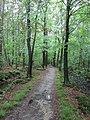 Wandelpark Oosterbos (31062421580).jpg
