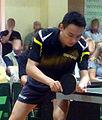 Wang Xi 2013.jpg