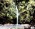 Waterfall in Tuyra River (3607563987).jpg